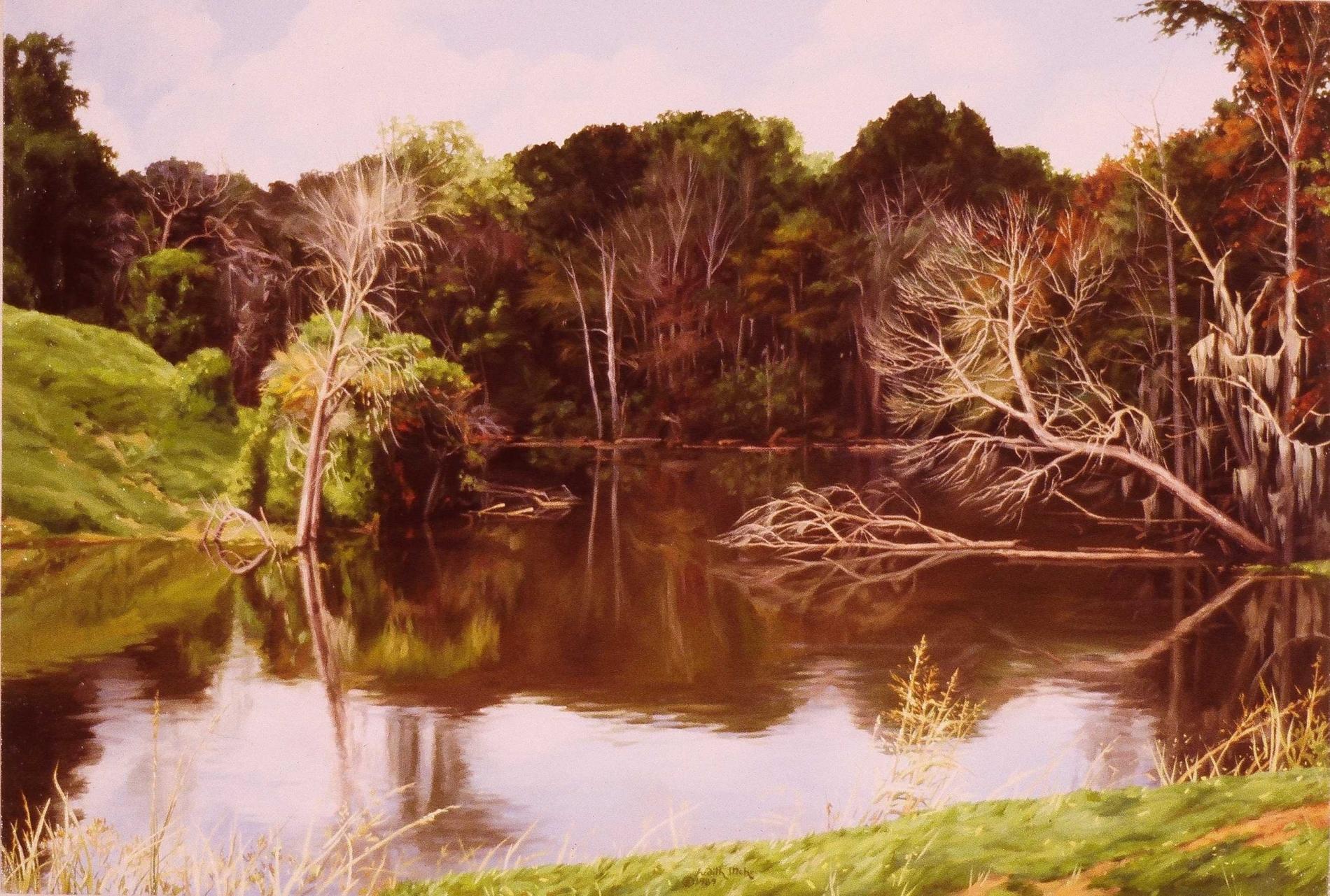 Mississippi Bayou