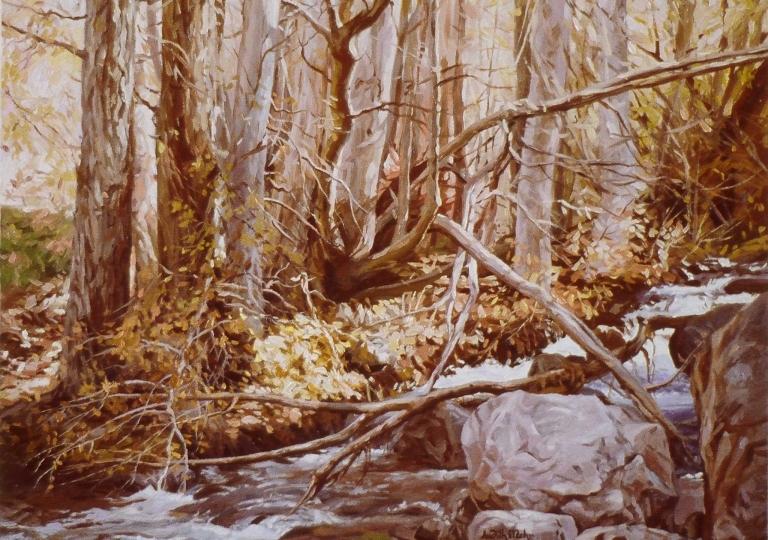 Cottonwood Fall